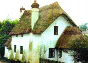 саман, саманный дом